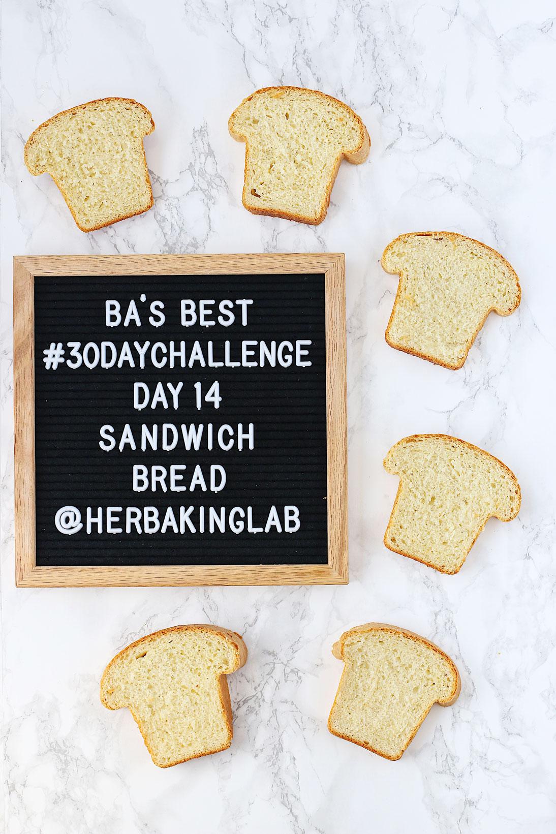 #ba30daychallenge-bon-appetit-best-recipes-day-14-sandwich-bread