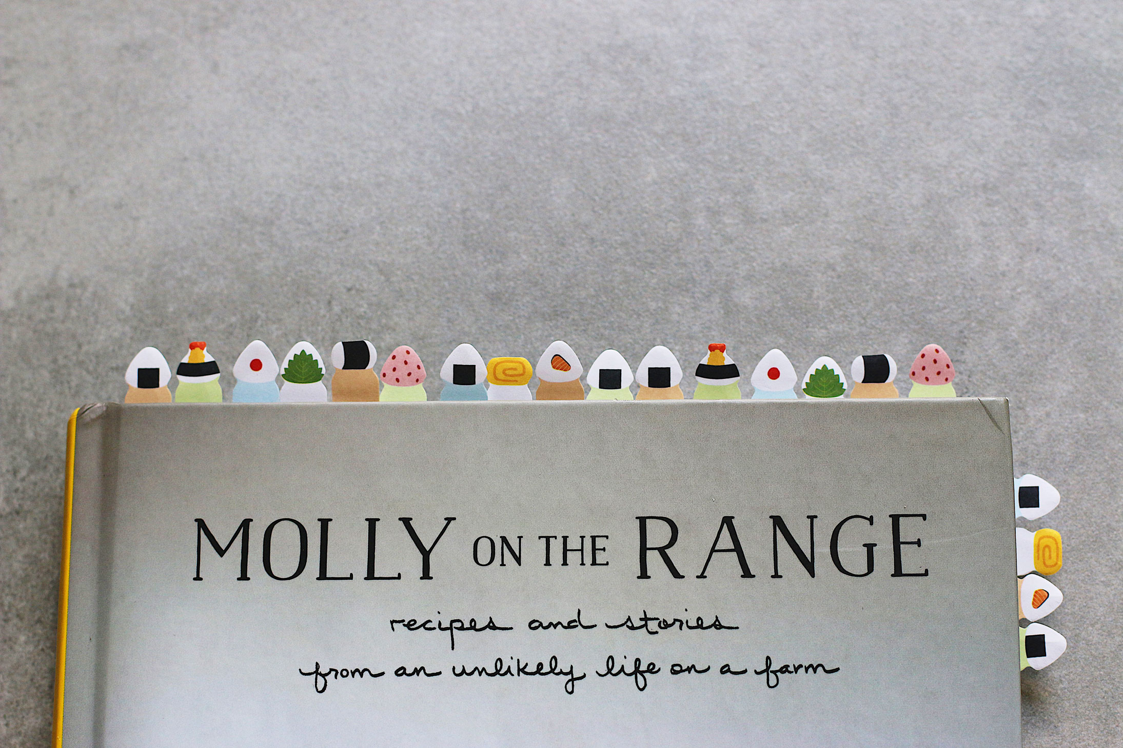 Her-Cookbook-Club-Molly-On-the-Range-bookmarks-recipes