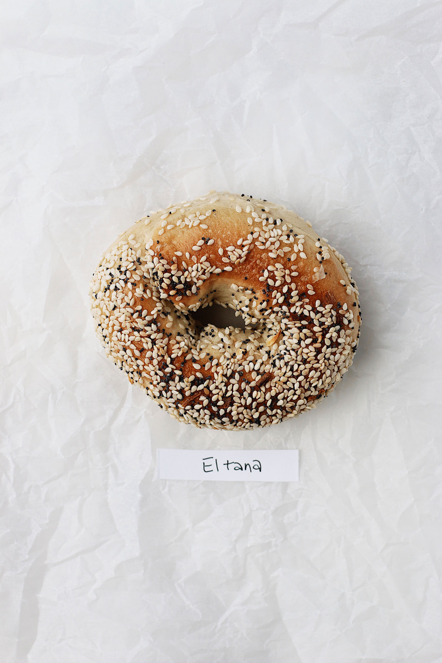 best-bagel-in-seattle-great-bagel-off-eltana-everything