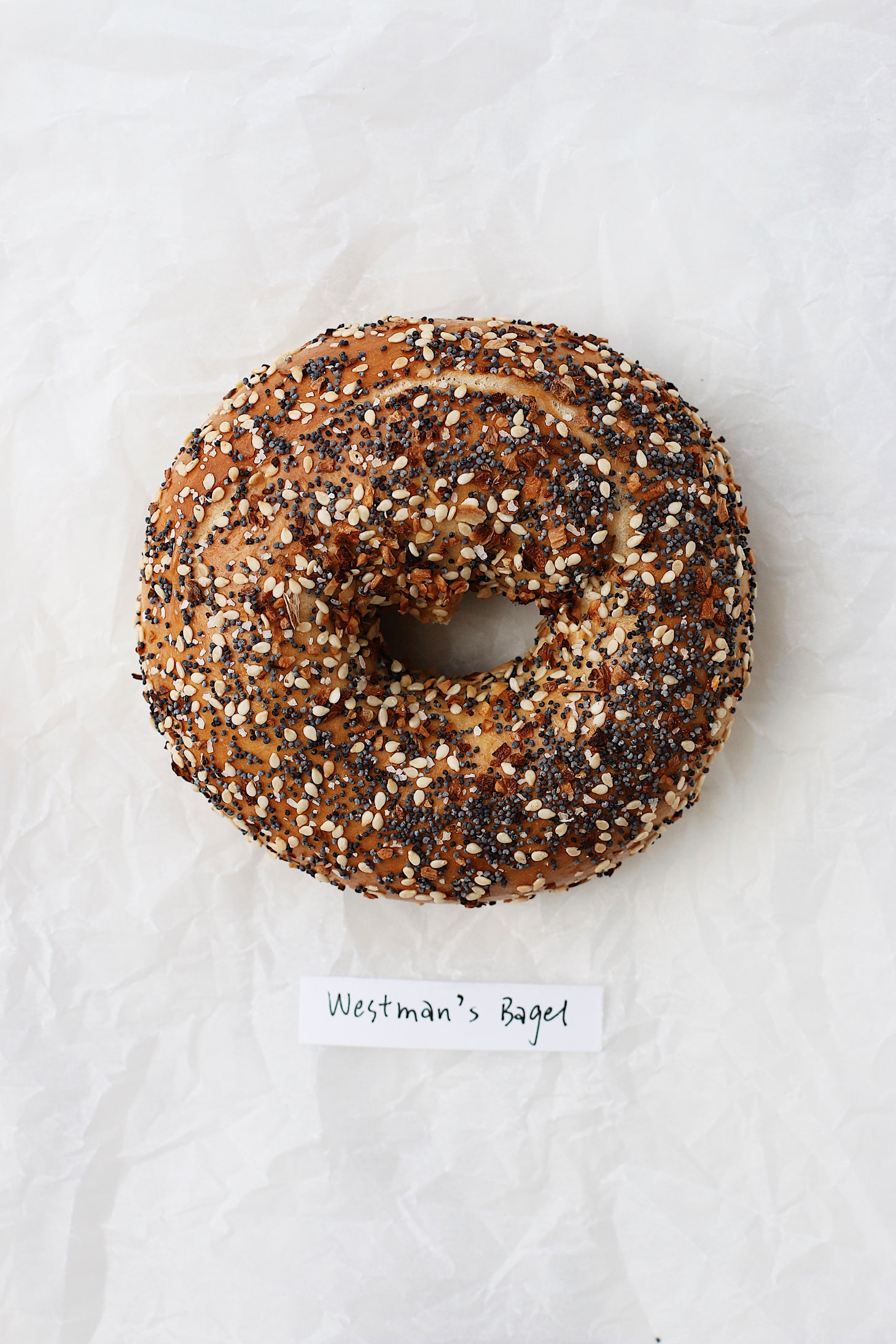 best-bagel-in-seattle-great-bagel-off-westman-everything