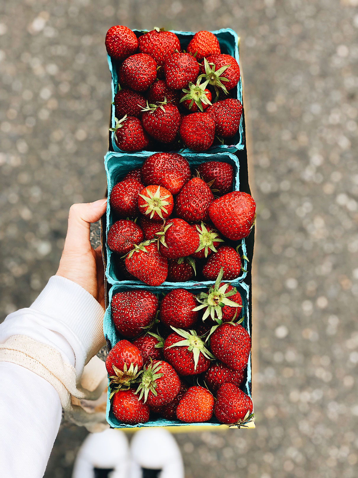 strawberry-farmers-market