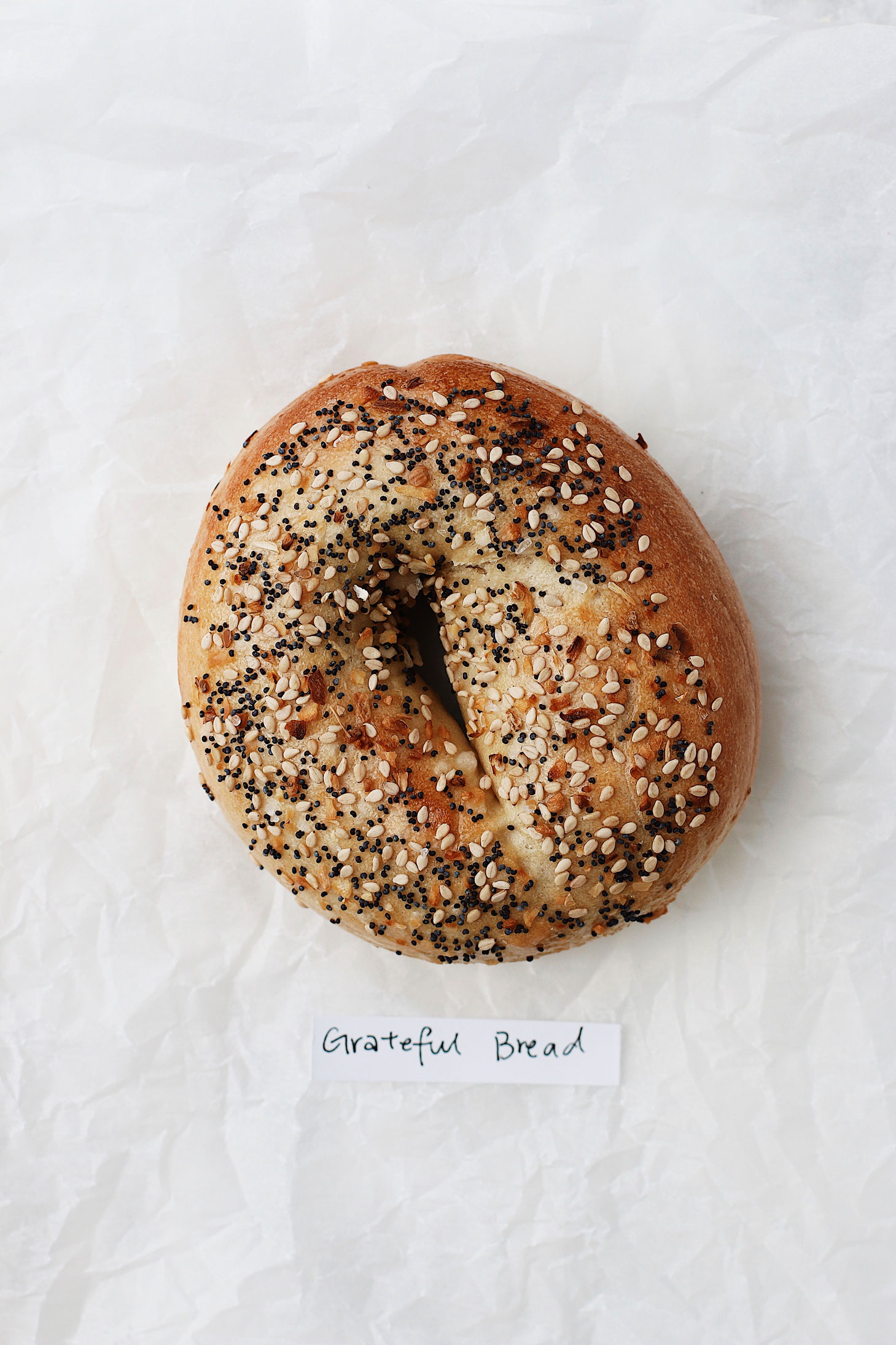 best-bagel-in-seattle-great-bagel-off-grateful-bread-everything